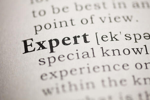 """Dictionary entry for the word """"Expert"""""""