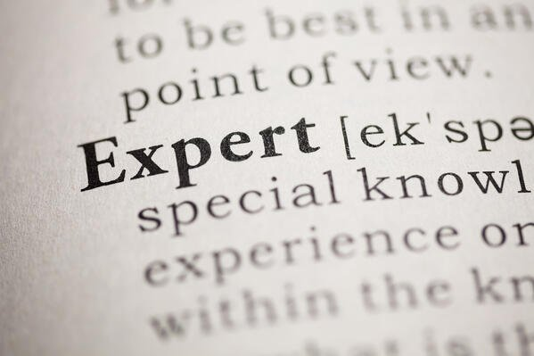 "Dictionary entry for the word ""Expert"""